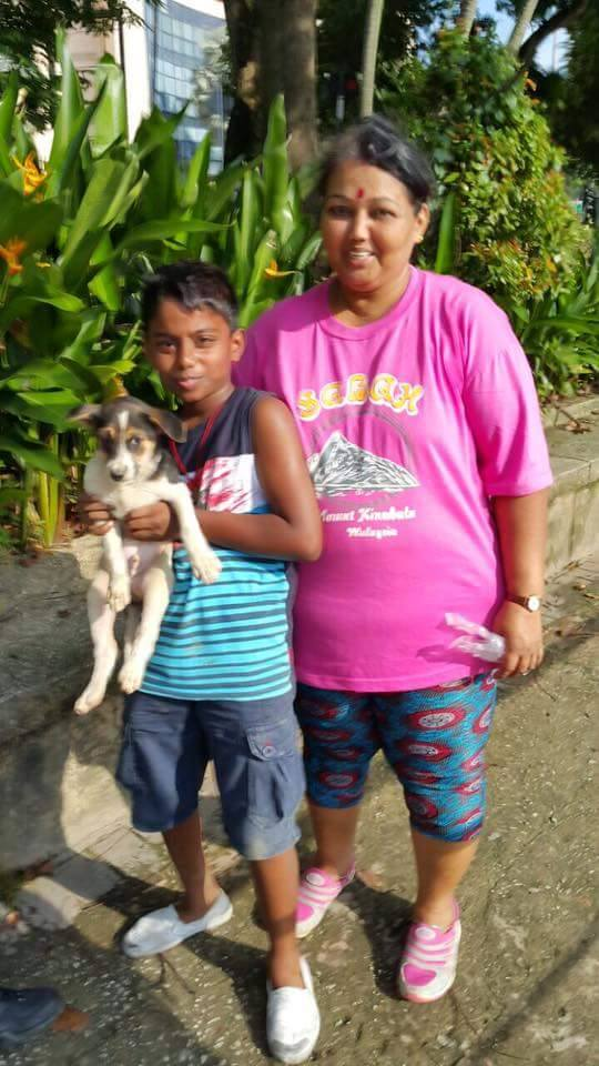 acto heroico niño rescata perrito en Malasia 5