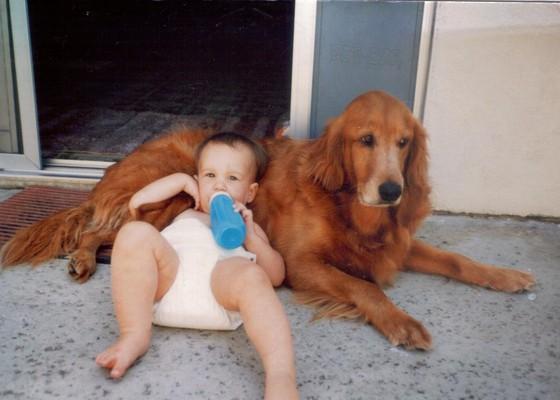 compartir-vida-perro16