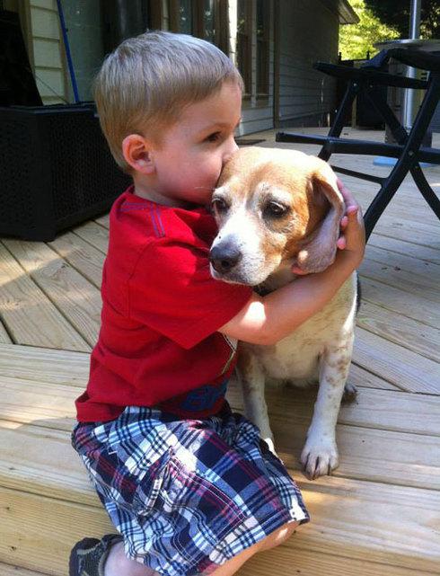 compartir-vida-perro17
