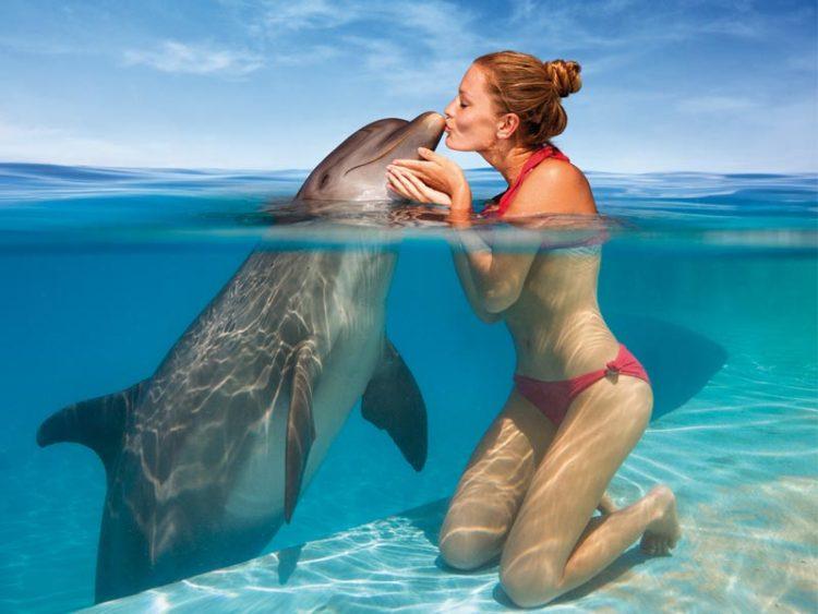 delfines-nadan-hoteles-caribe113