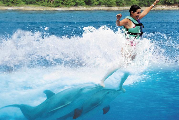 delfines-nadan-hoteles-caribe15