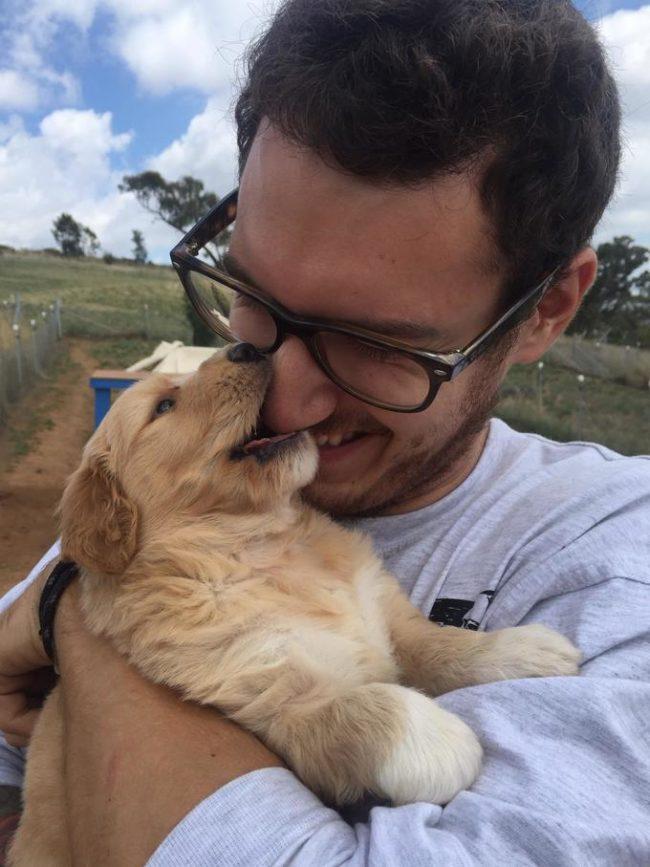 dia-internacional-cachorros28