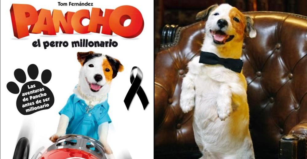 muere-pancho-perro-millonario1 - Copy