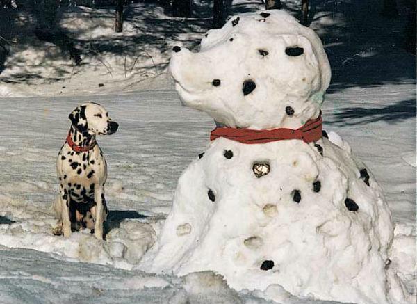 perritos-munecos-nieve10