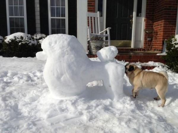 perritos-munecos-nieve15