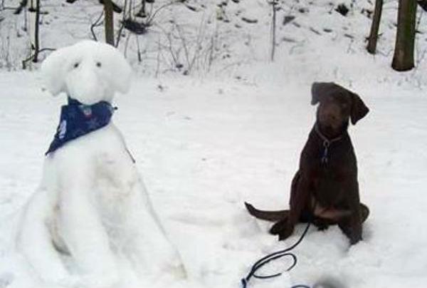 perritos-munecos-nieve2