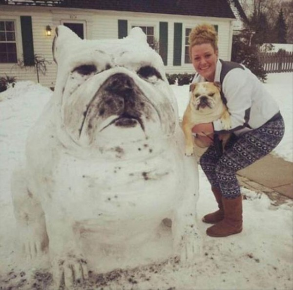 perritos-munecos-nieve3
