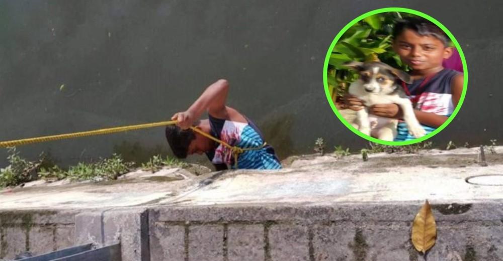 rescate-perrito-nino-malasia