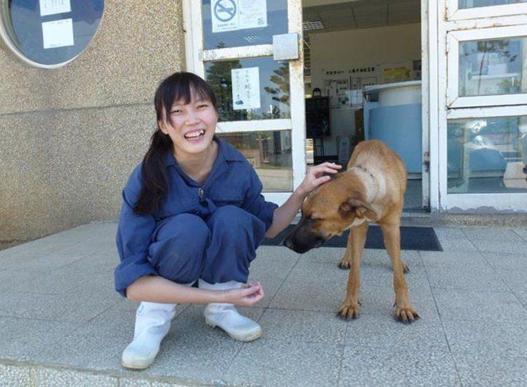 veterinaria-se-suicida-por-sacrificar-animales1