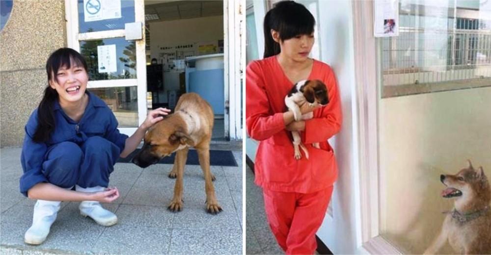 veterinaria-se-suicida-por-sacrificar-animales1 - Copy
