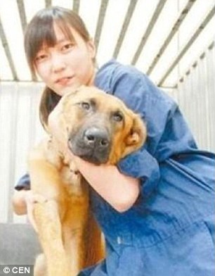 veterinaria-se-suicida-por-sacrificar-animales8