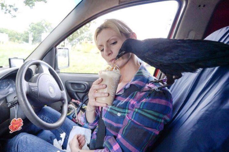 Crow no deja a mujer que lo salvó 3