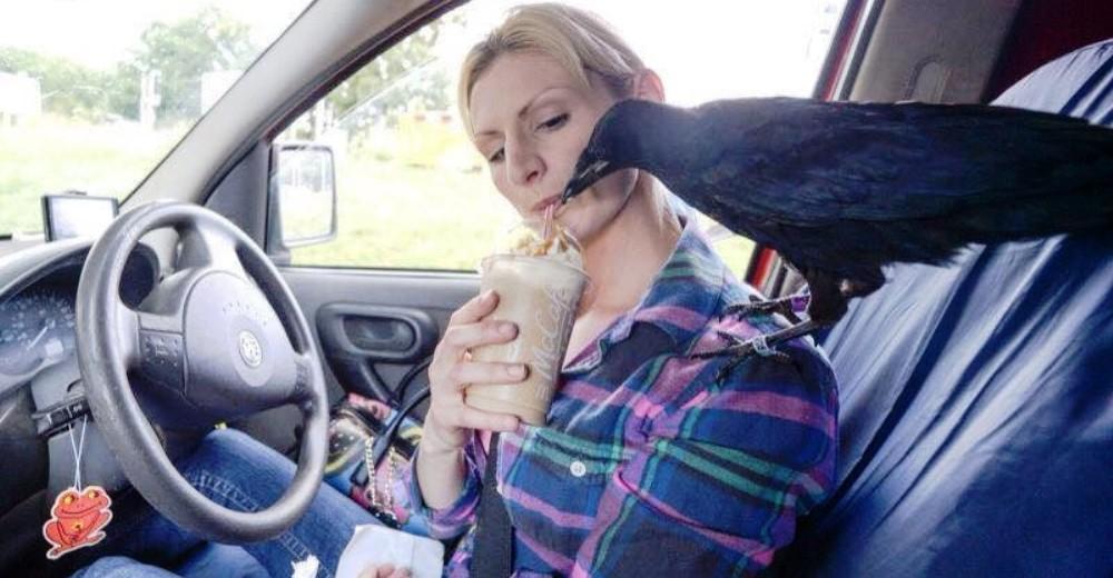 Crow no deja a mujer que lo salvó portada
