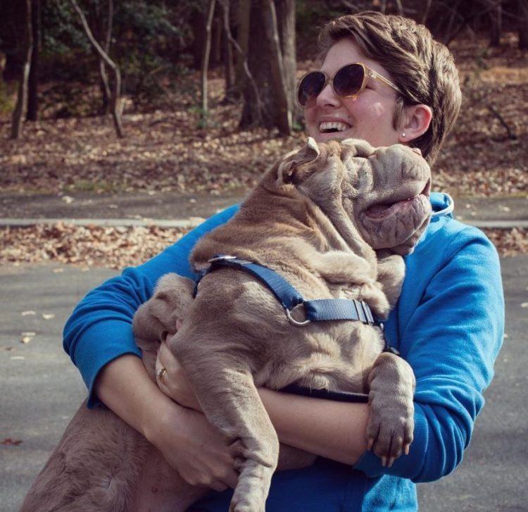 Dos perritos con vidas de tragedia distintas se conocen al ser adoptados 5