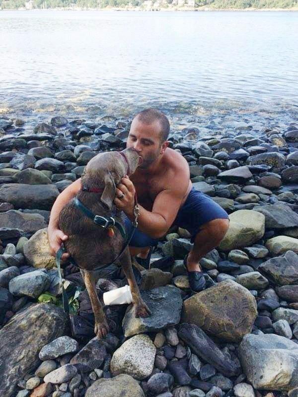 Hombre salta en el oceano para salvar a un perro 5