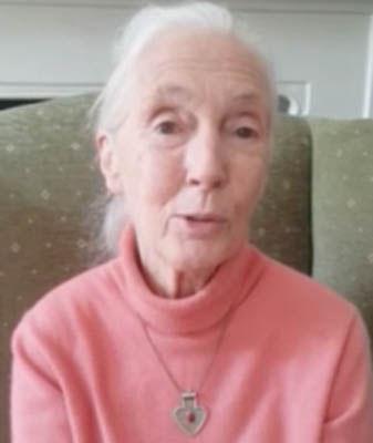 Jane Goodall habla sobre la carne de perro 2