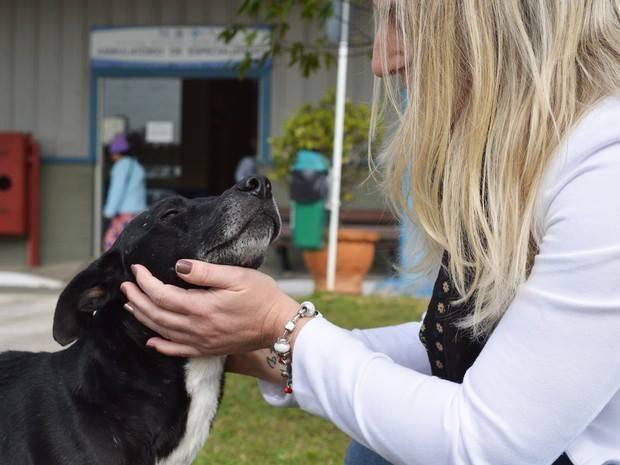 Negao-perro-hospital-brasil 4