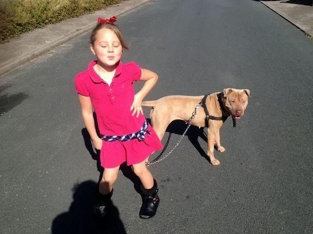 Nena-autismo-pit-bull 1
