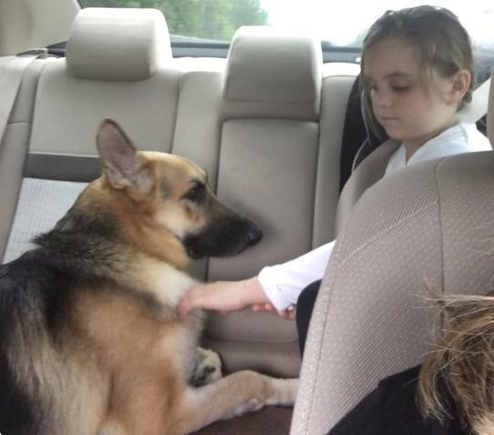 Perrito y pequeña niña 1