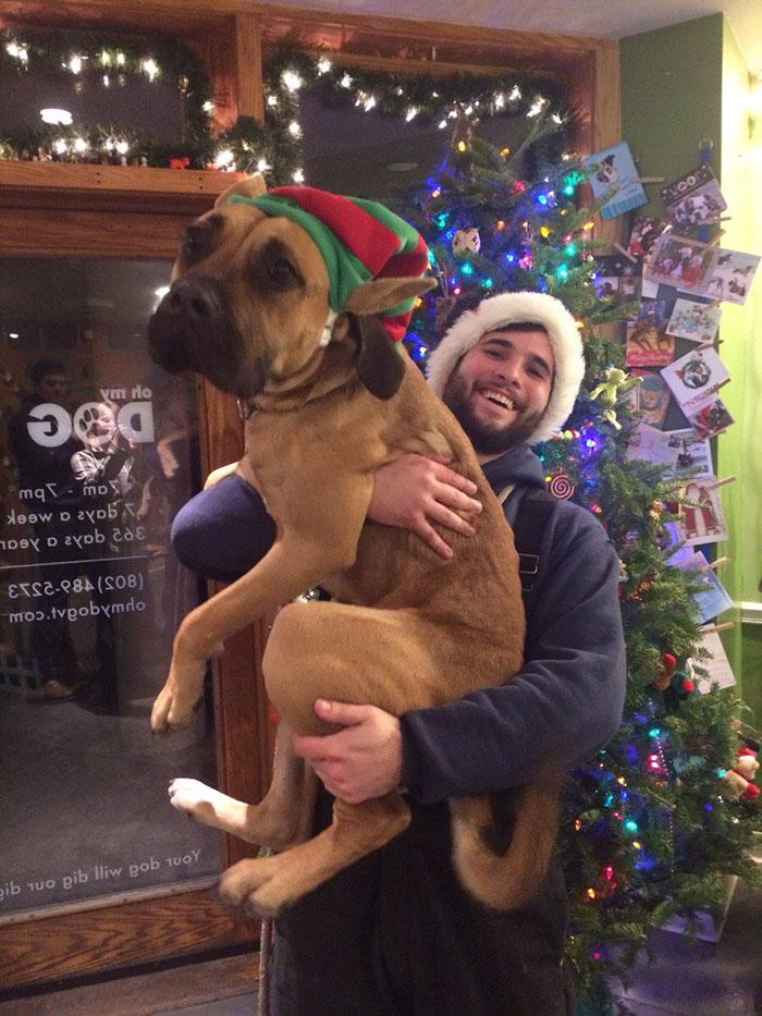 Perros-adoptados-primer-dia-en-casa 11