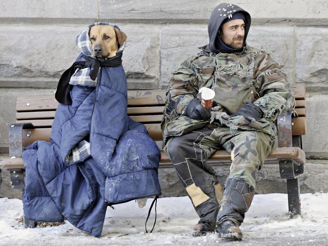 Perros no abandonan a los humanos 20
