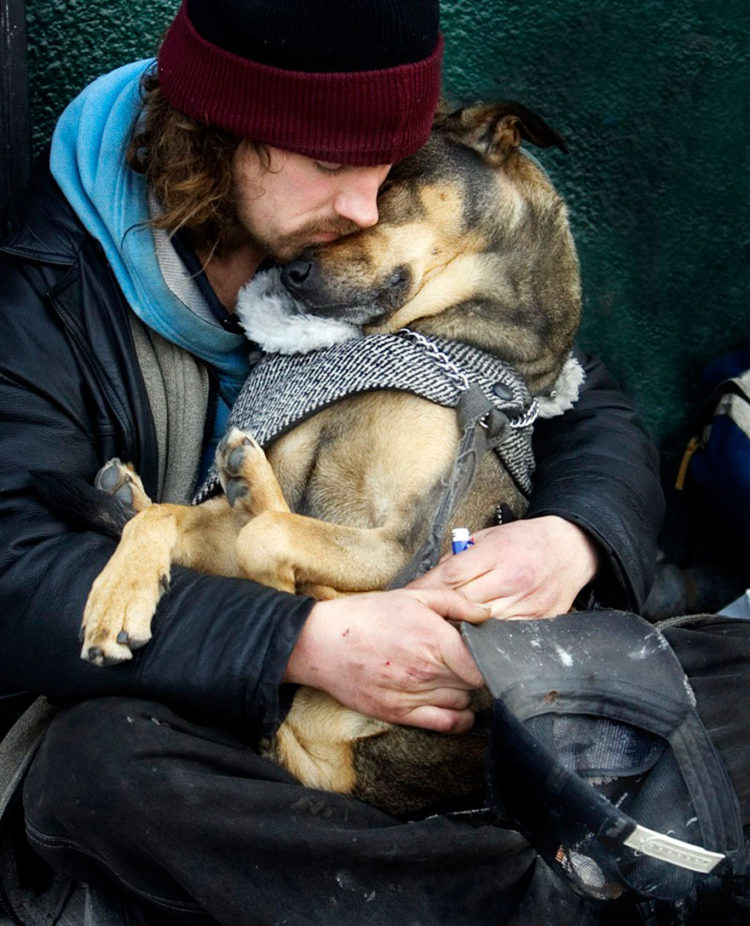 Perros no abandonan a los humanos 21