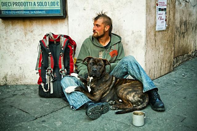 Perros no abandonan a los humanos 40