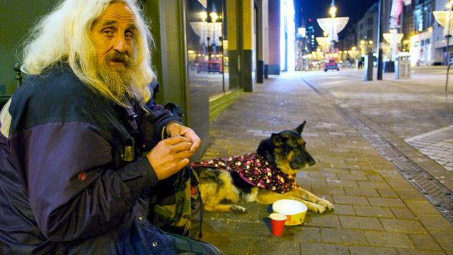 Perros no abandonan a los humanos 41