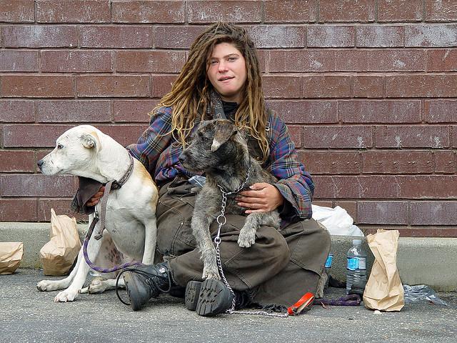 Perros no abandonan a los humanos 45
