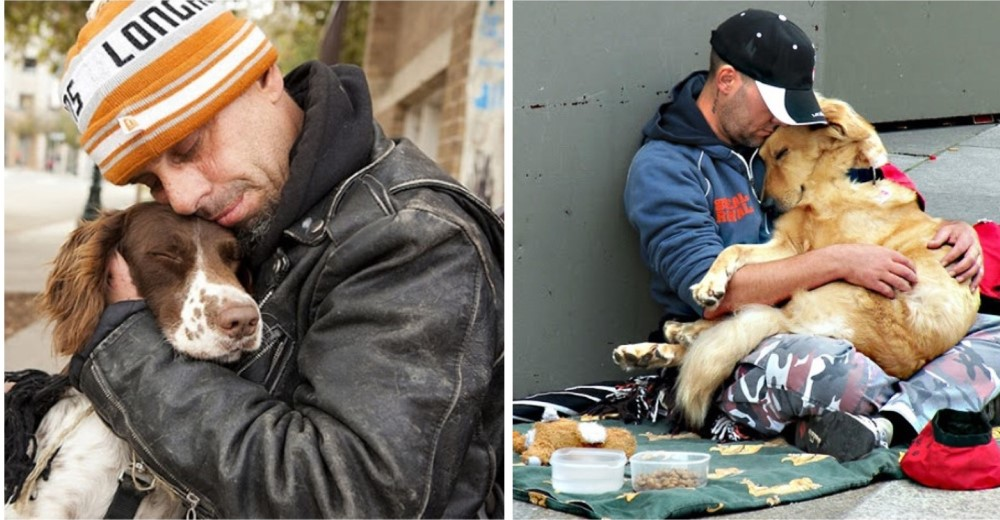 amor-verdadero-perros-personas-sin-hogar