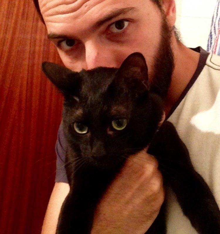 hombre-salva-gatito6
