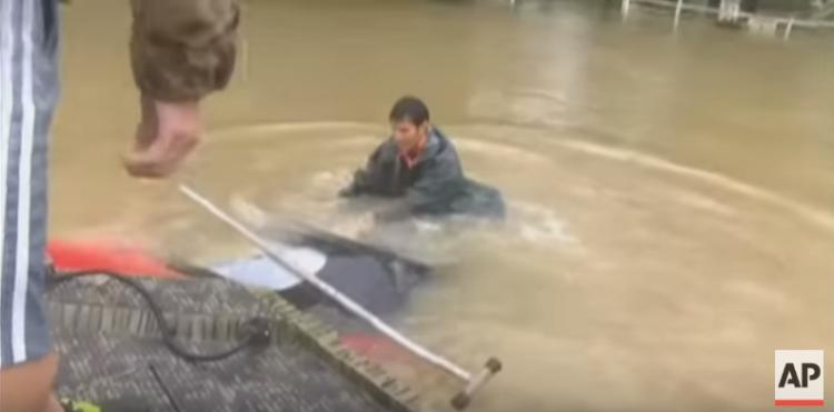 perro-inundacion2