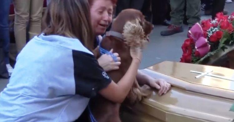 perro-se-despide-de-dueno-victima-de-terremoto-de-italia3 - Copy