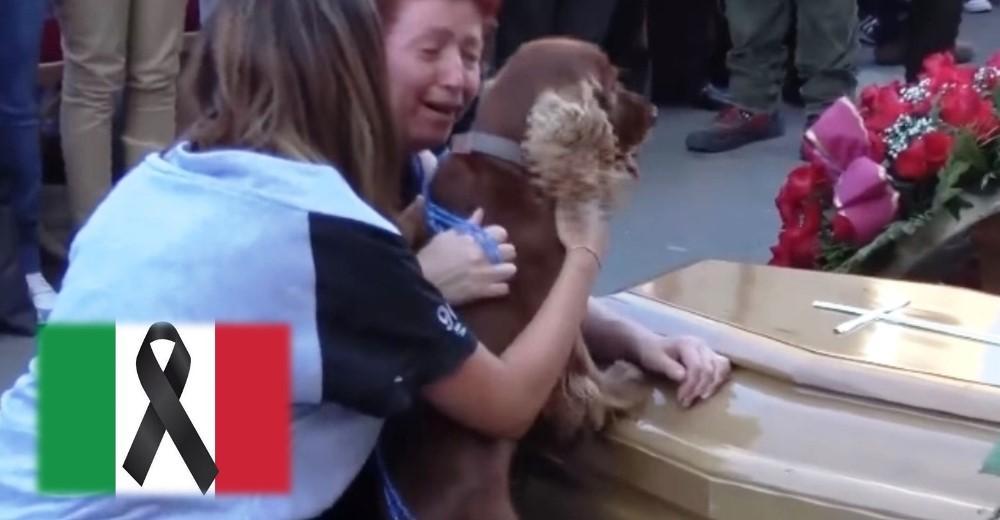 perro-se-despide-de-dueno-victima-de-terremoto-de-italia4