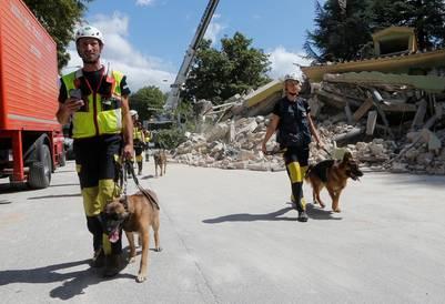 perros-rescatistas-terremoto-italia2