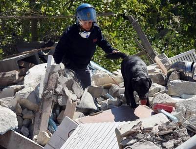 perros-rescatistas-terremoto-italia3
