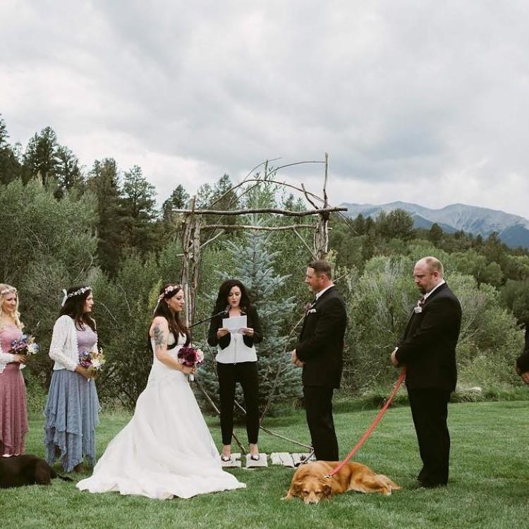 boda-con-perro-enfermo-01