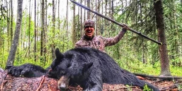 oso-muerto-con-una-lanza-4