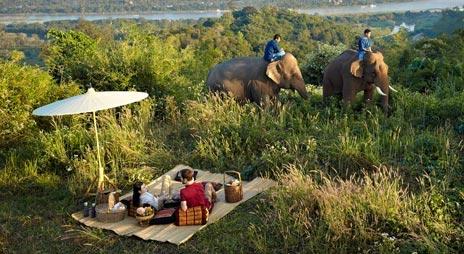 turistas-deben-negarse-a-dar-paseos-en-elefantes-para-librarlos-del-dolor-de-su-alma-rota-3