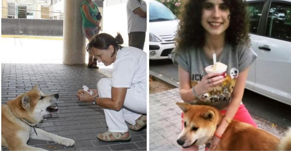 reencuentro-perrito-hospital3 - Copy