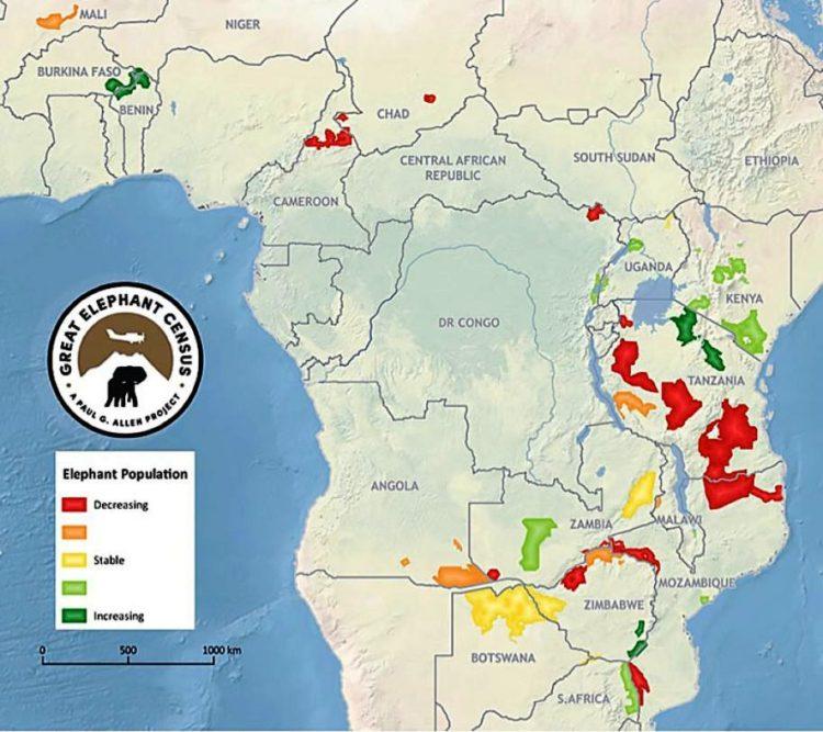africa-ha-perdido-un-tercio-de-sus-elefantes-en-tan-solo-7-anos-2