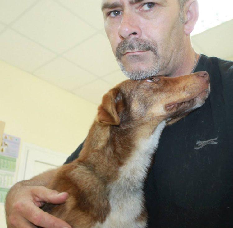duke-perro-encadenado-a-remolque-en-bulgaria-rescatado-7