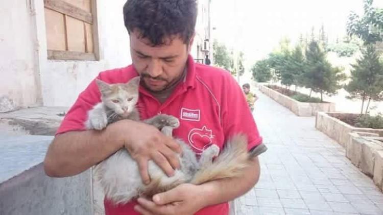 hombre-gato-aleppo-siria-04
