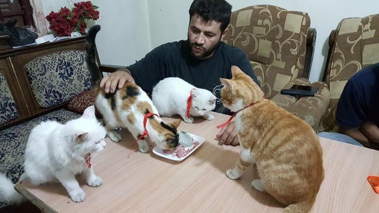 hombre-gato-aleppo-siria-08