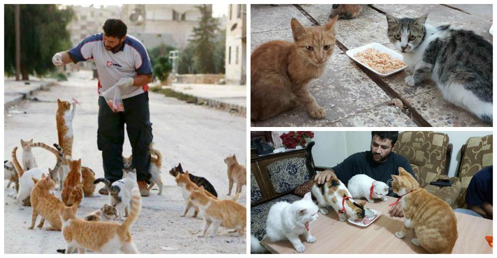 hombre-gato-aleppo-siria-portada