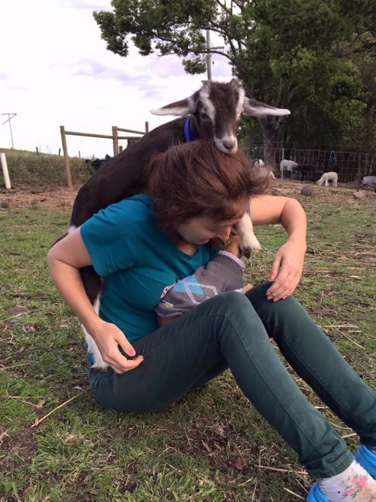 millie-cabra-refugio-australia-06