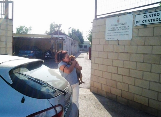 cachorro-melo-rescatado-en-murcia3
