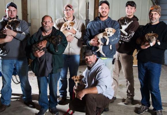 despedida-de-soltero-adoptan-7-perros1