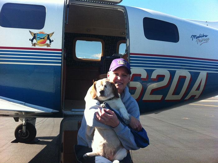 pilotos-voluntarios-salvan-perros-10
