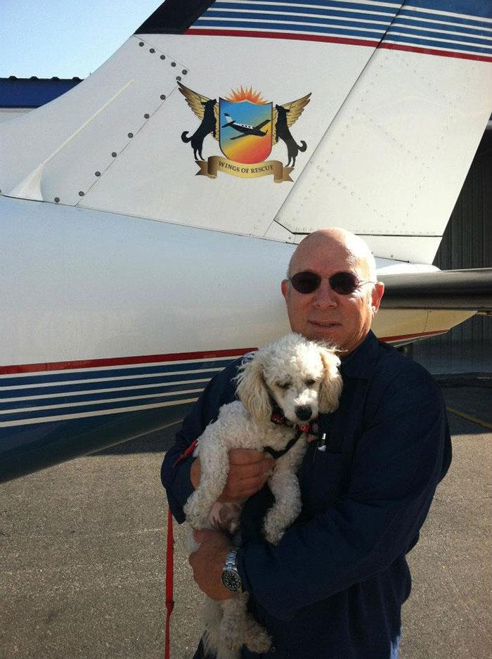pilotos-voluntarios-salvan-perros-16